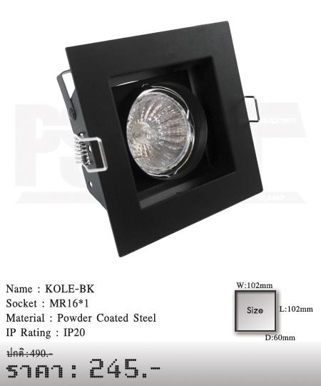 ดาวน์ไลท์-โคมไฟวินเทจ-ขายโคมไฟ-ร้านขายโคมไฟ-โคมไฟโมเดิร์น-KOLE-BK