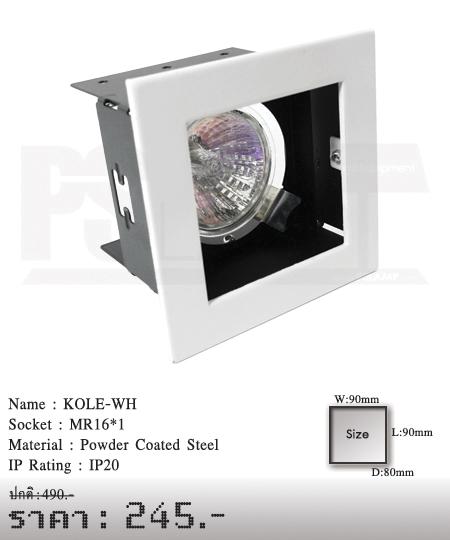 ดาวน์ไลท์-โคมไฟวินเทจ-ขายโคมไฟ-ร้านขายโคมไฟ-โคมไฟโมเดิร์น-KOLE-WH