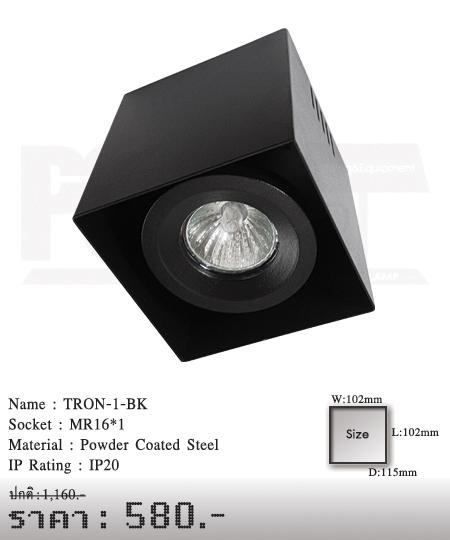 ดาวน์ไลท์-โคมไฟวินเทจ-ขายโคมไฟ-ร้านขายโคมไฟ-โคมไฟโมเดิร์น-TRON-1-BK