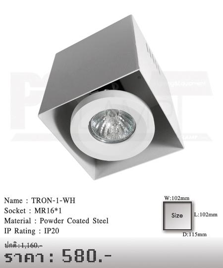 ดาวน์ไลท์-โคมไฟวินเทจ-ขายโคมไฟ-ร้านขายโคมไฟ-โคมไฟโมเดิร์น-TRON-1-WH
