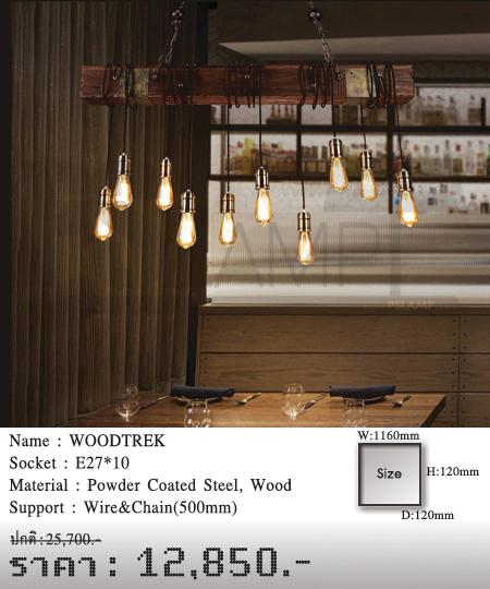 โคมไฟเพดาน-โคมไฟวินเทจ-โคมไฟโมเดิร์น-ร้านขายโคมไฟ-ขายโคมไฟ-WOODTREK